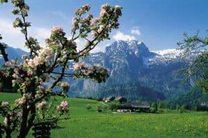 Tennengebirge rund um Abtenau